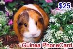 Guinea Phone Card